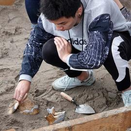 Simulated Archaeology Dig